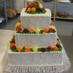 3 Cake Square Color